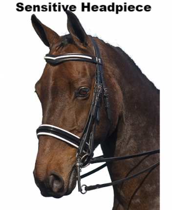 Weymouth Bridle by Sabre: TG Signature Patent Leather Double Bridle Cordoba Patent Bridles